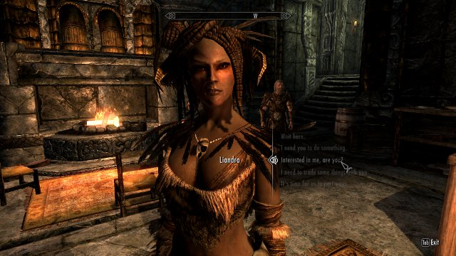 Friends and Allies: Skyrim Companions and Followers